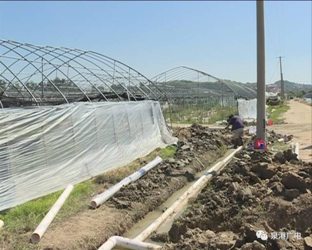 农业灌溉项目高效节水,泉