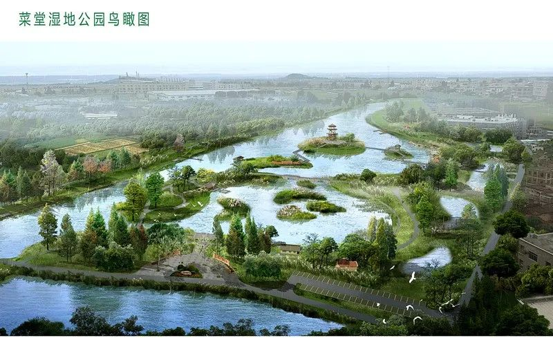 泉港最大湿地公园,来了!年底完工!